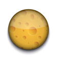 Cheese Pattern App Icon vector image
