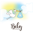 168 5 2016 baby vector image