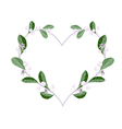 Calotropis Gigantea Flowers in A Heart Shape vector image