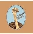 Animal planet Logo Symbol vector image