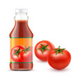 transparent bottle with vector image