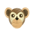 drawing capuchin primate brazil fauna vector image