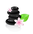 zen stones with flower and leaf vector image vector image