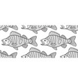 bass fish contour pattern vector image