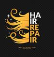 Hair repair vector image