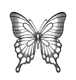 graphic black and white butterfly vector image