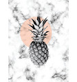 marble texture design with pineapple vector image