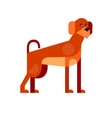 Cute dog detailed vector image