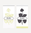 hand drawn perilla in outline and silhouette style vector image