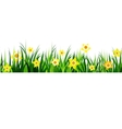 Green Grass seamless daffodils vector image