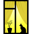 cat in the window vector image