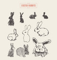 collection realistic rabbits drawn sketch vector image