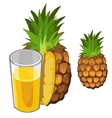 Pineapple juice and fruit drinks isolated vector image