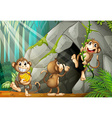 Three monkeys living in the cave vector image vector image