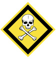 Skull and crossbones symbol vector image