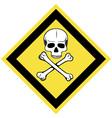 Skull and crossbones symbol vector image
