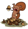 squirrel and acorns vector image