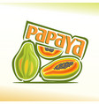 papaya still life vector image