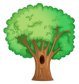 Tree object vector image vector image