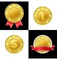 Gold Coin Medal Icon vector image