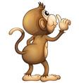 A monkeys back vector image