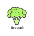 broccoli thin line icon isolated cauliflower vector image