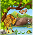 Wild animals by the pond vector image