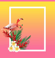 colorful summer frame vector image