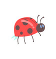 cute cartoon red ladybug character vector image vector image
