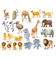 Wildlife set vector image vector image