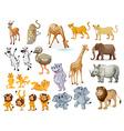 Wildlife set vector image