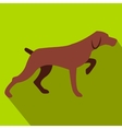 Hunting dog flat icon vector image