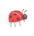 cute cartoon red ladybug character vector image