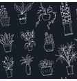 seamless pattern plants in a pot Hand drawn doodle vector image