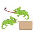 lizard eating insect in flat style vector image