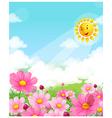 Flower blossom vector image