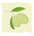 Two green olives vector image