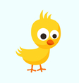 Small Chick vector image