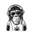 monkey hipster wirh dreadlocks in headphones vector image