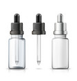 3d realistic set of bottles with dropper vector image