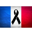black mourning ribbon on a flag of France vector image