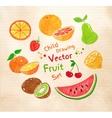 Felt pen fruit vector image