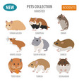 hamster breeds icon set flat style isolated on vector image