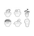 house plant icon set outline style vector image