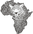 Symbol Africa in leopard camouflage vector image