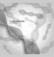 black and white background dna structure vector image