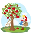 Girl with basket and apple tree vector image