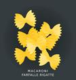 traditional italian kitchen macaroni farfalle vector image