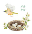 watercolor wreath with bird nest with eggs vector image