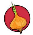 Onion clip art vector image